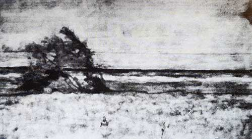 Giovanni Fattori - Riflettografia allinfrarosso